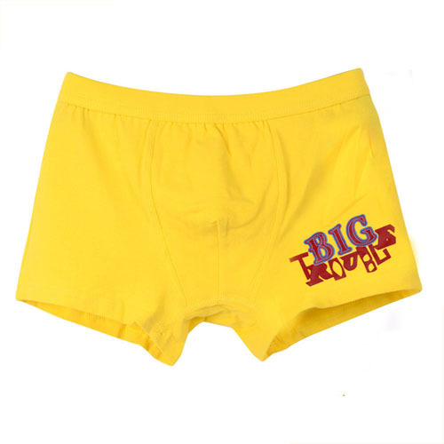 Children-Pants-Toddler-Boys-Underwear-Big-Boys-Panties-Letter-Cotton-Kids-Briefs-High-Quality-Boy-Panties.jpg